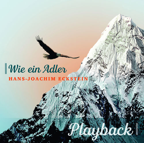 Wie ein Adler Playback-CD instrumental